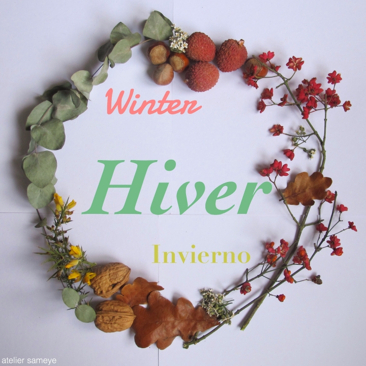 hiver-2016-2017