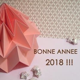 origami_meringue_rose_Janv2018